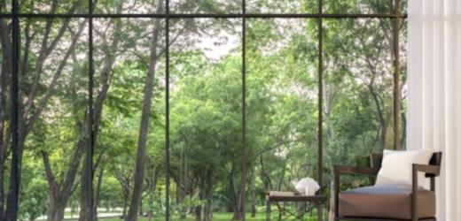 Baie vitrée : l'option idéale pour un intérieur lumineux